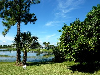 Florida Lehigh Acres Golfvilla am Lake Denise