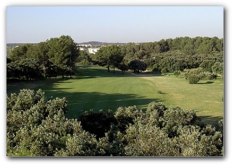 Frankreich Provence Golf de Pont Royal Ferienhaus Oliviers - 09