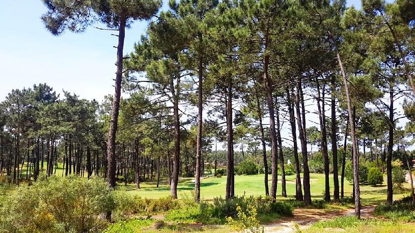 Portugal Aroeira Designervilla am Golfplatz 4 SZ - 14