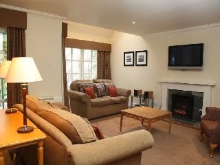 Schottland Perthshire Comfort Lodgeappartement