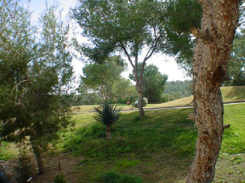 Las Ramblas Appartement Murcia - 08